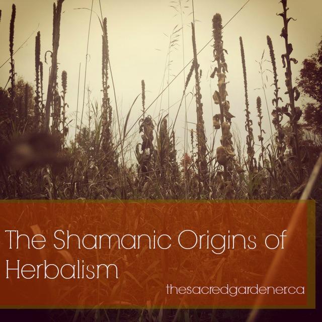Shamanicorigins