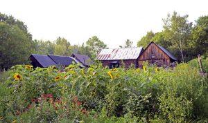 The Sacred Gardener Farm