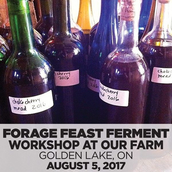 Forage Feast Ferment The Sacred Gardener